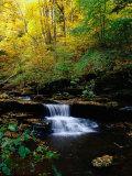 Waterfalls  Ricketts Glen State PArk  PA