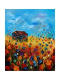 Field Flowers And Old Barn - Poppies