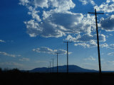 Silhouetted Telephone Poles under Puffy Clouds