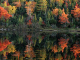 Autumn Foliage Reflected in a Canadian Lake