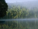 A Foggy Morning on a Placid Lake
