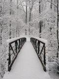 Vue d'un pont couvert de neige dans les bois Papier Photo par Richard Nowitz
