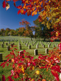 Autumnal View of Arlington National Cemetery