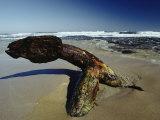 A 19th Century Shipwreck Anchor Stranded on a Beach