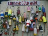 Colorful Lobster Buoys Hang on a New England Shed