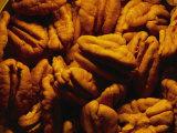 Gros plan de noix de pécan décortiquées baignées par une lumière chaude Papier Photo par Brian Gordon Green