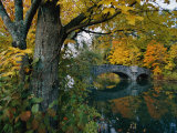 Autumnal View of a Stone Bridge