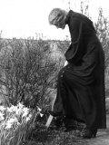 Madame Maud Gonne MacBride Working in Her Garden
