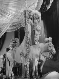 """Chorus Girl Standing on Horse's Back During Filming of the Movie """"The Ziegfeld Follies"""""""