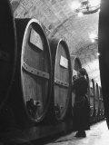 Jesuit Novitiate Winery  Oak Casks of Wine in Underground Tunnel of Winery