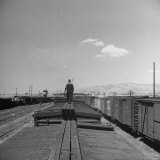 Man Walking Atop a Freight Train Heading Westbound