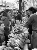 Illegal White Bread For Sale in Black Market