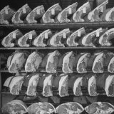 Cuts of Beef on Shelves at Meat Processing and Packing Plant Papier Photo par Alfred Eisenstaedt