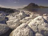 Salt Deposits  Great Salt Lake