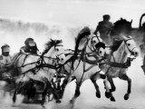 Troika Race at Hippodrome