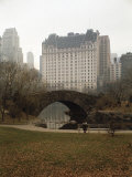 View from Central Park with Plaza Hotel in the Distance