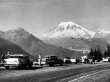 Tourist Looking at Mt Rainier in Southwest Washington