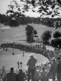 Spectators Watching as Men Compete in the Golf Tournament  Riviera Country Club
