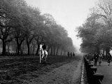 Rider on Horseback in Hyde Park