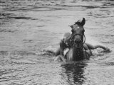 Sydney Hoyle Floundering on Back of Horse in Water at Full Cry Farm