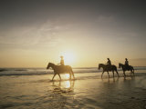 Horseback Riders Silhouetted on a Beach at Twilight  Costa Rica