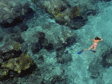 In Shimmering Waters  a Snorkeler Explores Boulder-Strewn Shallows