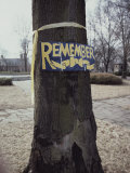 A Symbolic Yellow Ribbon and a Sign Saying Remember on a Tree