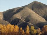 Autumn View of Hills North of Salmon  Idaho
