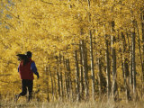 Woman Running in Field by Aspen Trees