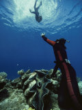 A Diver on the Sea Floor Gestures to Another Diver Who is Descending