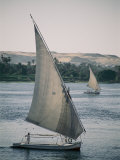 Twin Feluccas Move in Unison on the Nile Near Luxor