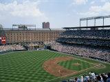 Baseball Game at Orioles Park