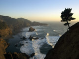 A Scenic View of the Oregon Coast at Samuel H Boardman State Park