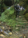 Woman Carries Mountain Bike up Steep Stone Stairs Next to Stream