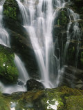 Small Waterfall Near the Milford Track on New Zealands South Island