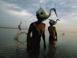Mohanis Fishermen Catch Herons in the Indus River