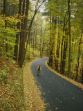 Biker on Road Amidst Fall Foliage