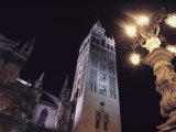 La Giralda  a Part of the Seville Cathedral  at Night