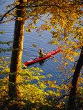 Woman Kayaking with Fall Foliage  Potomac River  Maryland
