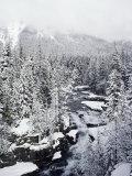 Winter View of Mcdonald Creek