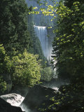 Vernal Fall Seen Through Lush Spring Foliage in Woodland Setting