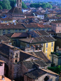 Rooftops and Buildings of Town  Lucca  Italy