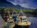 Trawlers at Rosroe in Killary Harbour  Connemara  Ireland