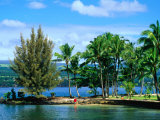 Coconut Island  a Small Island in Hilo Bay  Hawaii  USA