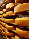 Cheese at Heidi Farm Tasmania  Australia