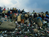 People Searching Through Rubbish in Manila's Smoky Mountain  Manila  Philippines
