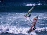 Windsurfing the Tradewinds  Hookipa  Maui  Hawaii  USA