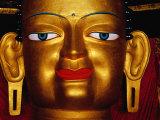 Shakyamuni Buddha Statue at Shey Monastery  Ladakh  India