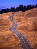 Winding Road at Mount Tamalpais  California  USA