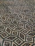 Mosaic Floor in Roman Ruins  Conimbriga  Portugal